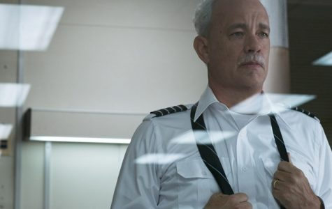 Sully: The Tale of a Hero's Survival