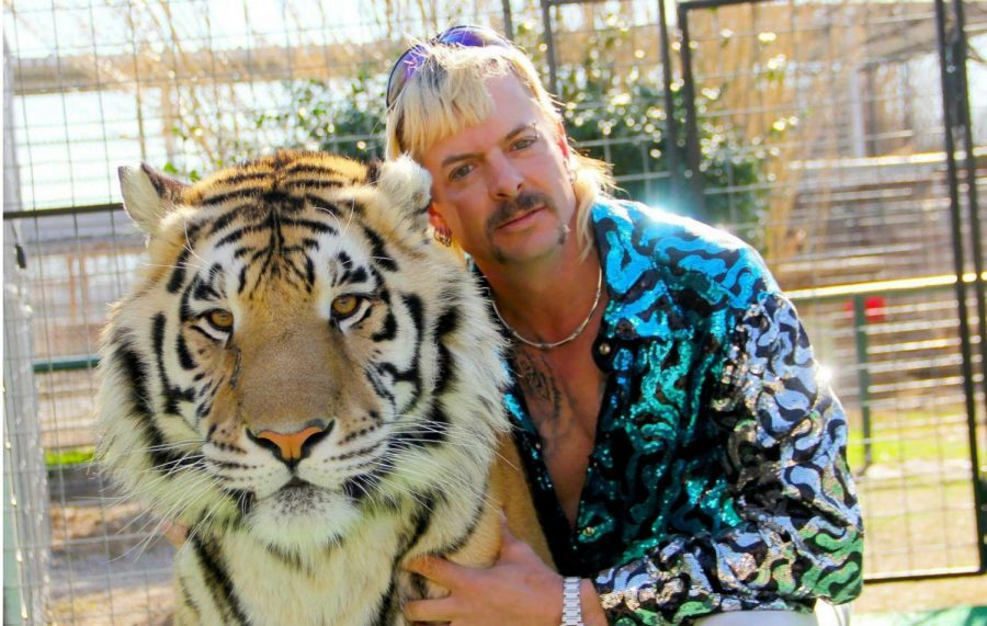 Opinion: Tiger King viewers are riled up for all the wrong reasons