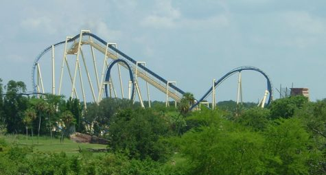 Top 5 Best Rides at Busch Gardens Tampa