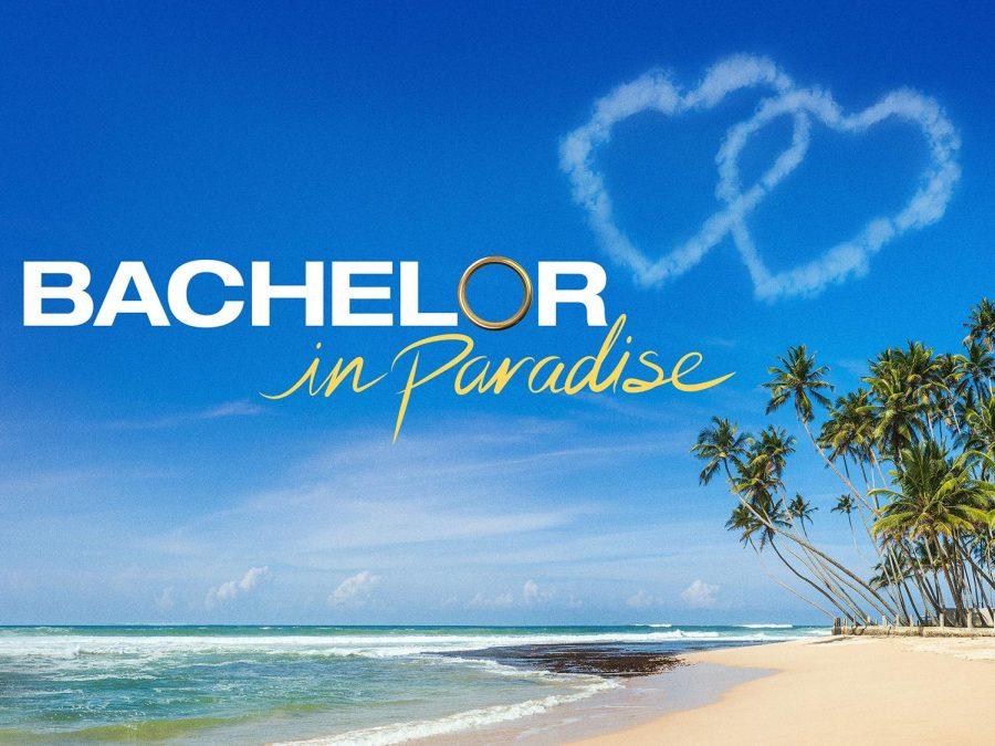 "Debra Tries ""Bachelor in Paradise"""